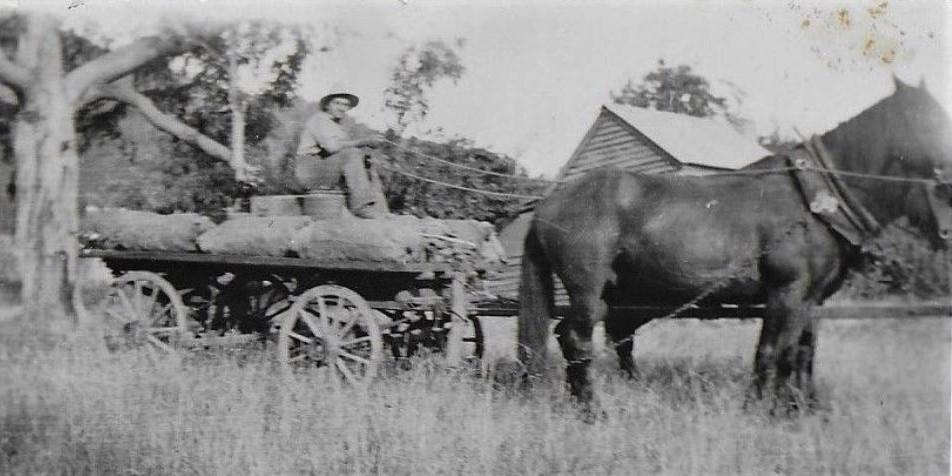 Robert-Coad-carting-tobacco-rolls
