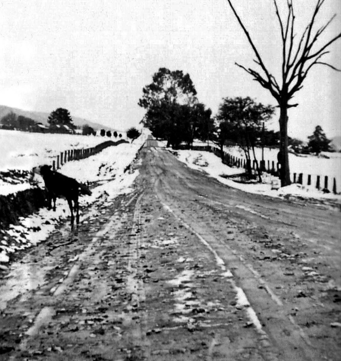 Tawonga-Road-1920s-002