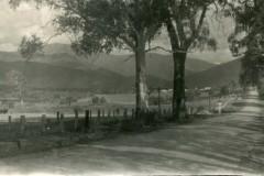 view-along-Kiewa-Valley-Hwy-south-of-Mongans-Bridge